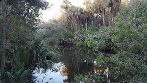 Palm Bay, Florida - Turkey Creek in 2015