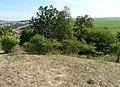 Tvarožná, Santon, přírodní památka (3).JPG