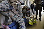 U.S. & Romanian Forces Conduct Bilateral Training 150228-M-XZ244-028.jpg