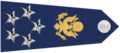 US Air Force O11 shoulderboard with seal-horizontal.png