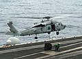 US Navy 020702-N-0967W-001 SH-60F aboard USS George Washington (CVN 73).jpg