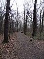 Uhříněves, obora, cesta (01).jpg