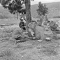 Uitstapje van jeugd uit een kibboets Een groepje jongeren in de schaduw van een, Bestanddeelnr 255-4489.jpg