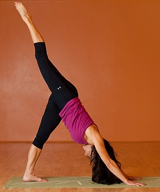 Yoga Sutras of Patanjali - Image: Urdhva Prasarita Ekapadasana (cropped)