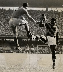 cdfe6803626 Fluminense FC - Wikipedia