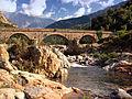 Vallee Fango-Pont de Manso.jpg