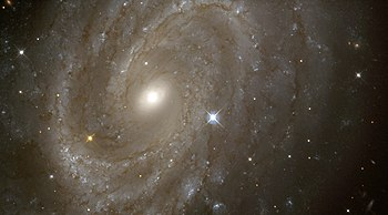 Variable Stars in a Distant Spiral Galaxy - GP...