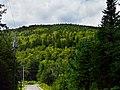 Versant sud du mont Tourbillon.jpg