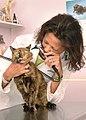 Veterinarian - DPLA - df13ea55ec6eb0d082d6f45d95327cfe.jpg