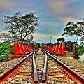 Vias del Tren en Jesus Carranza Veracruz municipio Mexico.jpg