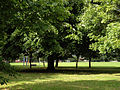 View Across Eccles Recreation Ground.jpg