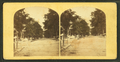 View of a street, from Robert N. Dennis collection of stereoscopic views 2.png