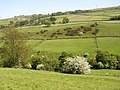 View over the valley of the Black Brook from Crow Wood Lane, Barkisland - geograph.org.uk - 180066.jpg