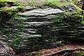 Vrch Rudná (852 m) fylitové skalky (1).jpg