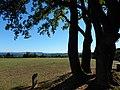 WO EINST MENSCHEN HINGERICHTET WURDEN,GALGENBUCK 3.9.2013 - panoramio.jpg