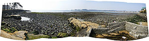 Yuigahama - Wakae Island exposed by an exceptionally low tide