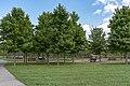 Walnut Woods - Childrens Area 1.jpg