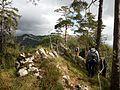 Wandern Rumpelflüe - panoramio.jpg
