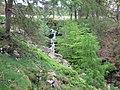 Waterfall - geograph.org.uk - 1313601.jpg