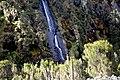 Waterfall along trail in Rwenzori mountains.jpg