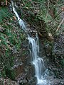 Waterfall in disused quarry - geograph.org.uk - 291948.jpg