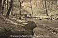 Watersmeet, Exmoor National Park (24422326054).jpg
