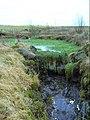 Weed-choked pond - geograph.org.uk - 1092355.jpg