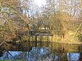 Weir at Hoo Mill - geograph.org.uk - 124986.jpg