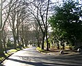 Well House Road - Well House Avenue - geograph.org.uk - 1128922.jpg