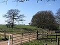 West Somerset Mineral Railway (geograph 3124528).jpg