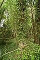 West Wycombe Park (533932199).jpg