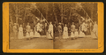 White Sulphur Springs, Napa Co. Cal, by J. G. Brayton 3.png