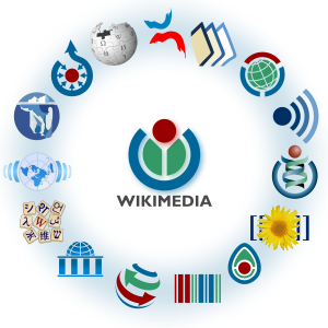 The Wikimedia Foundation and its projects