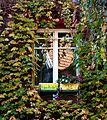 Window, Square de Montsouris, Paris November 2014.jpg