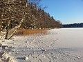 Winter (8253998053).jpg