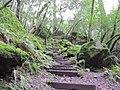 Winter in Sugarloaf Ridge State Park - 6422718131.jpg