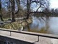 Wiosna wystartowała ,-)) 4 - panoramio.jpg