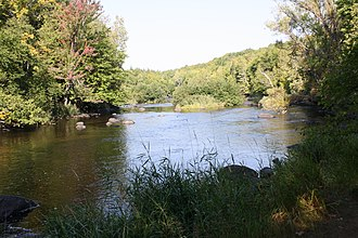 Wolf River (Fox River tributary) - The Wolf River in Langlade County