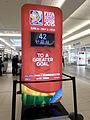 Women world cup 2015 countdown.JPG