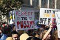 Womensmarch austin texas img 4177 (32089355040).jpg