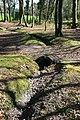 Woodland culvert near Scorrier - geograph.org.uk - 1236105.jpg