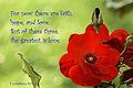 Words of hope R.H.(24).jpg