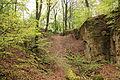 Wuppertal - Zu den Dolinen - Dolinengelände 12 ies.jpg