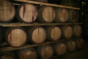 Tulbagh - Red wine maturing in oak barrels