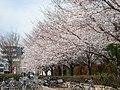 YOKOYAMA park - panoramio.jpg