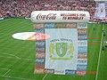 Yeovil Flag at Wembley.jpg