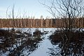 Yuntolovka under snow 2020-12-12-2.jpg