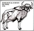 ZSI Logo.jpg