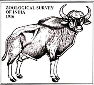 Zoological Survey of India organization