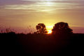 Zecherland sunset1024.jpg